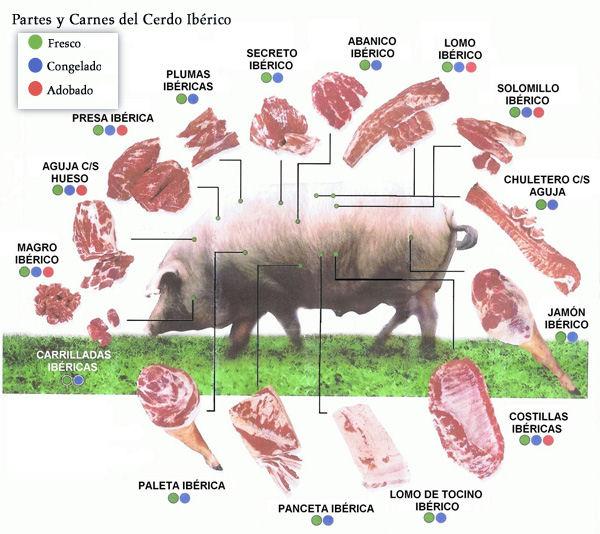 La imagen tiene un atributo ALT vacío; su nombre de archivo es Despiece-del-cerdo-iberico-y-partes.jpg